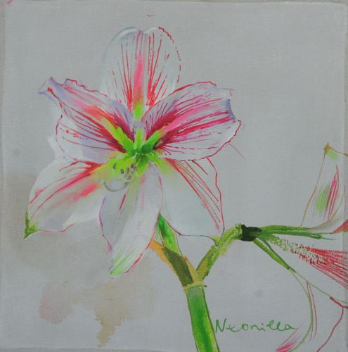 Neonilla Medvedeva - Amarilis 1 - 2010 - oil on canvas - 25 x 25